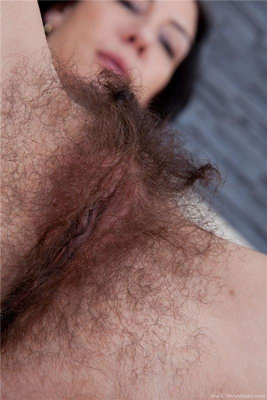 порно волосатые хуй гей секс